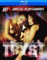 Tryst (Digital Playground)
