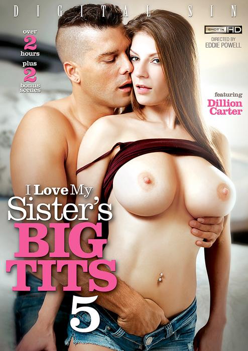 Я Люблю Большие Сиськи Моей Сестры #5 / I Love My Sister's Big Tits #5 (2015) DVDRip