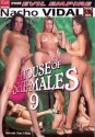 House Of She Males 9