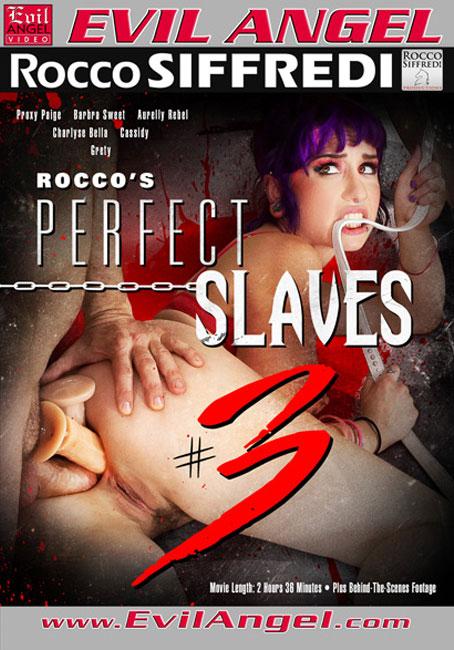 Идеальные Рабыни Рокко #3 / Rocco's Perfect Slaves #3 (2014) DVDRip